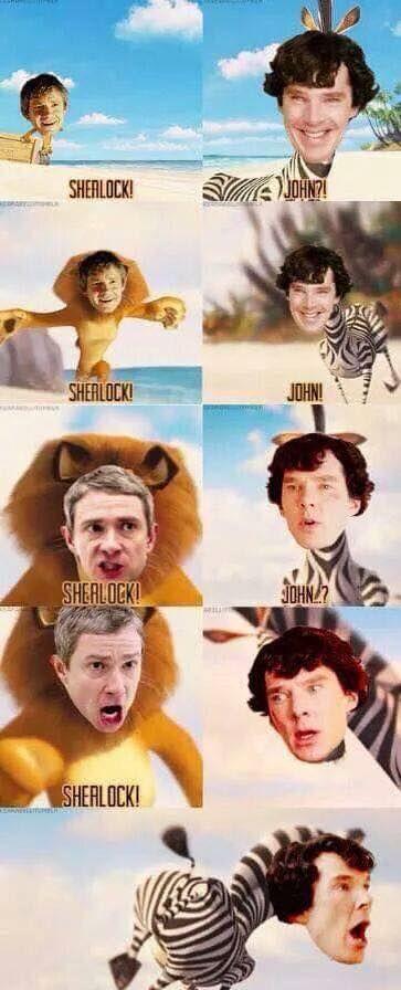 Run, Sherlock, run!!!