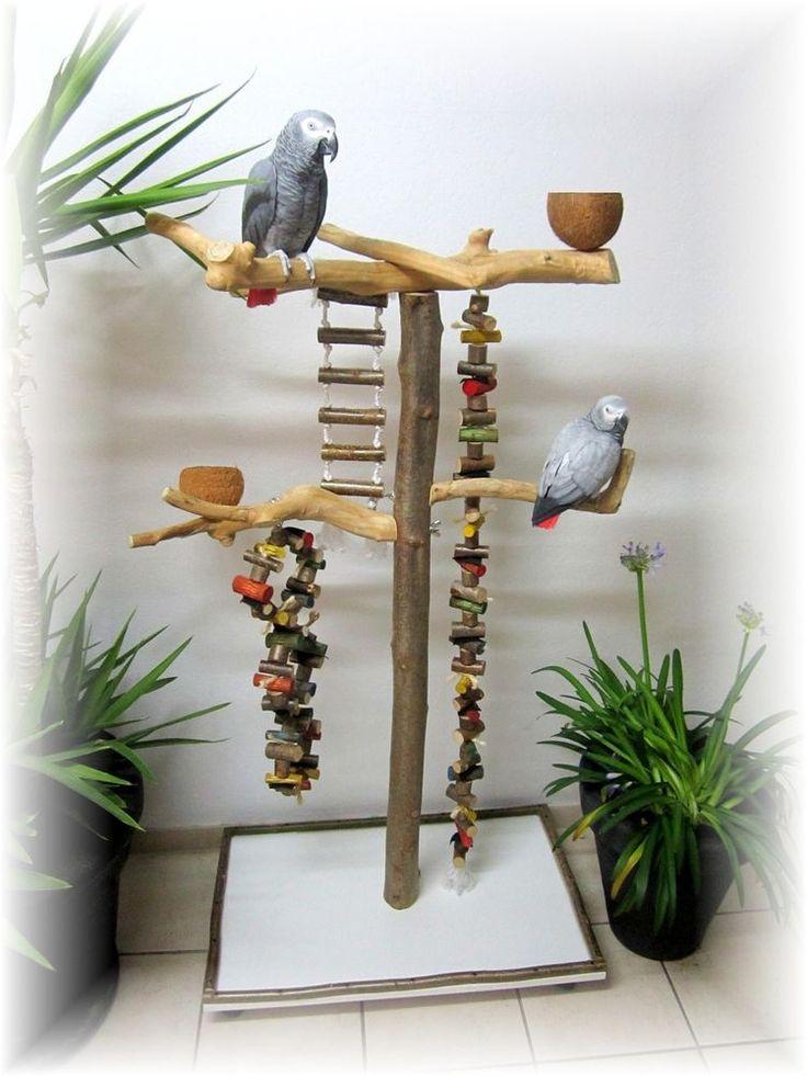 Freisitz für Papageien, Papageienspielzeug, ORIGINAL Java Holz, Hartholz, 165 cm   eBay