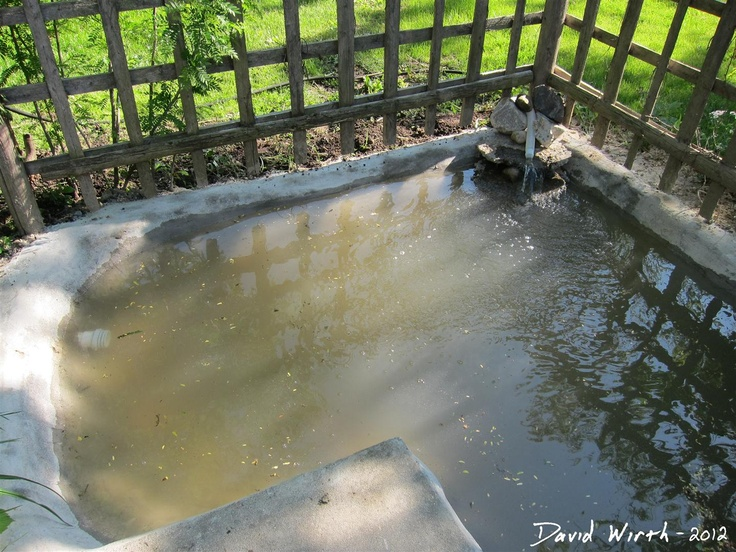 Diy concrete pond with pool filter ponds water features for Concrete garden pond