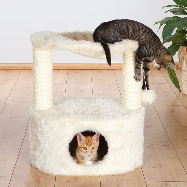 1000 ideas about scratching post on pinterest cat trees cat supplies and cat furniture. Black Bedroom Furniture Sets. Home Design Ideas
