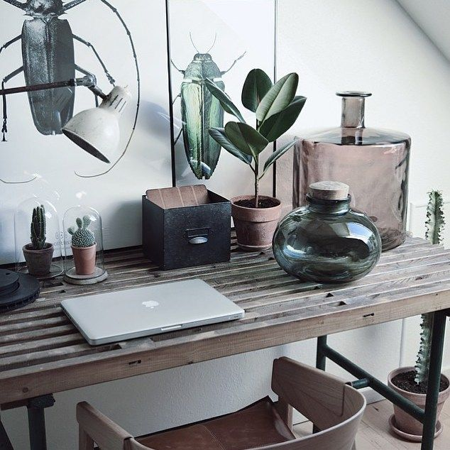 Desk plant decor www.therustyhome.dk