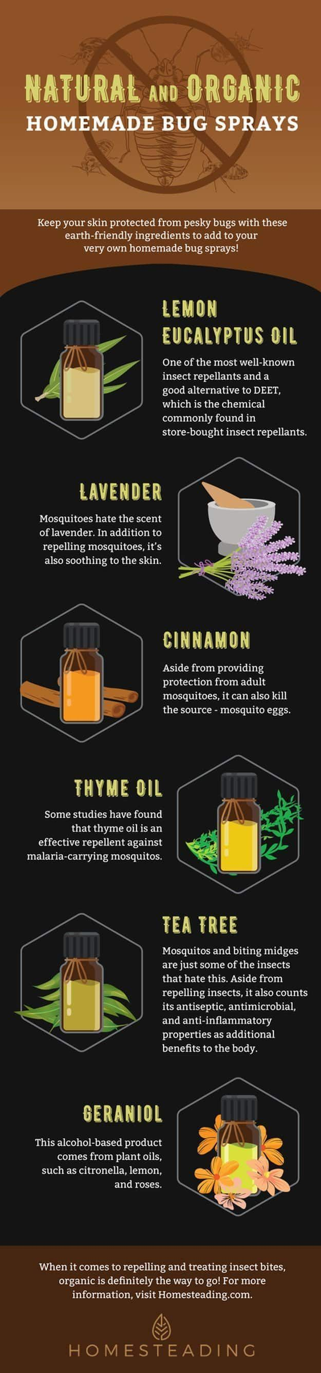 It's always best to go natural and organic when it comes to keeping your skin and safe. Here's a list of some natural ingredients that work like magic to repel mosquitoes | Natural and Organic Homemade Bug Sprays | https://homesteading.com/homemade-bug-sprays/