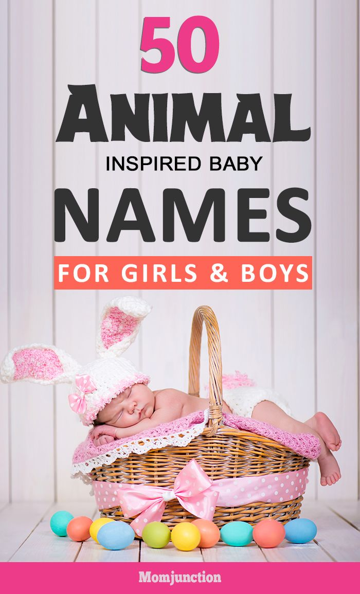 Share your love for animals by picking an animal inspired baby name for your little one. To help you on your way, we've compiled 50 animal names for babies.