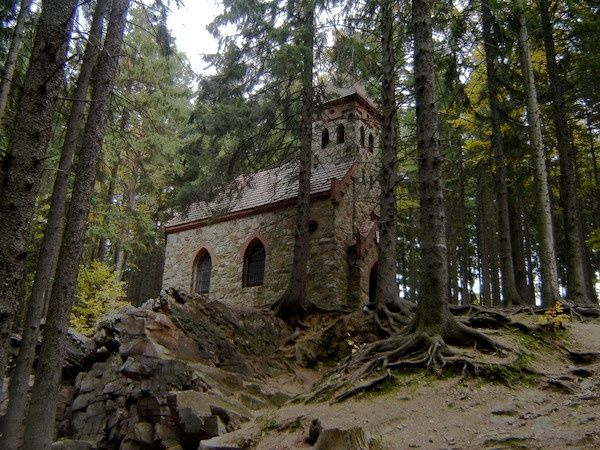 Cathedral in the Woods | Church in Glucholazy, Poland.