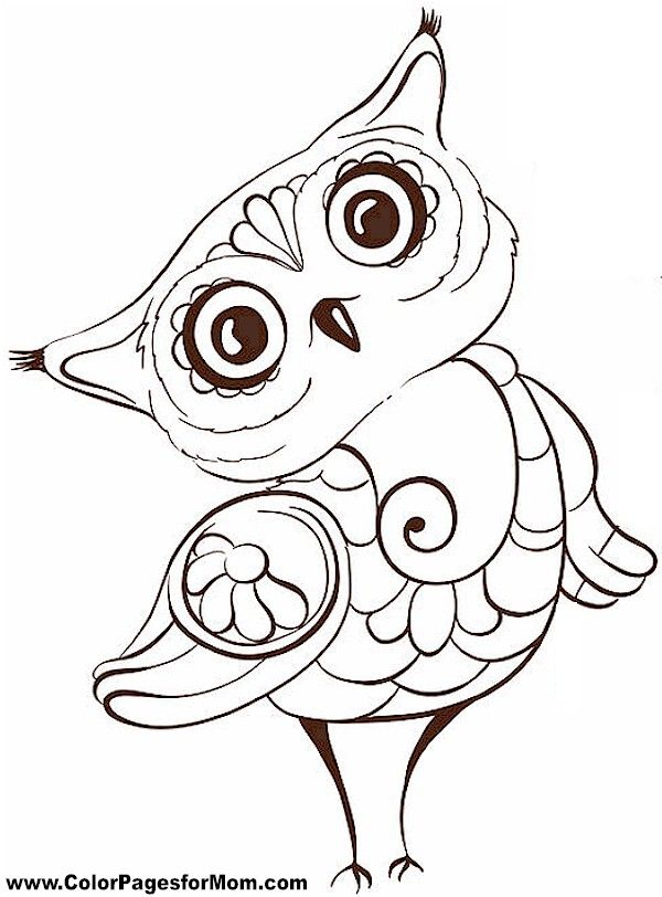 17 Best Ideas About Owl Coloring Pages On Pinterest