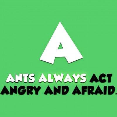 Alphabet Animals Video