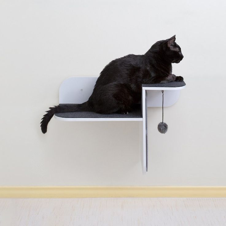 Hauspanther modern cat furniture wall mounted cat perch. Best 25  Modern cat furniture ideas on Pinterest   Contemporary