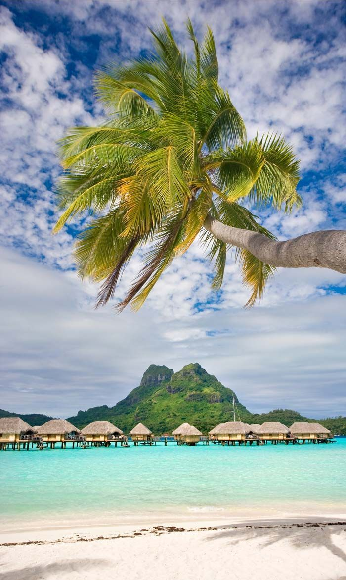 Over Water Bungalows in Bora Bora French