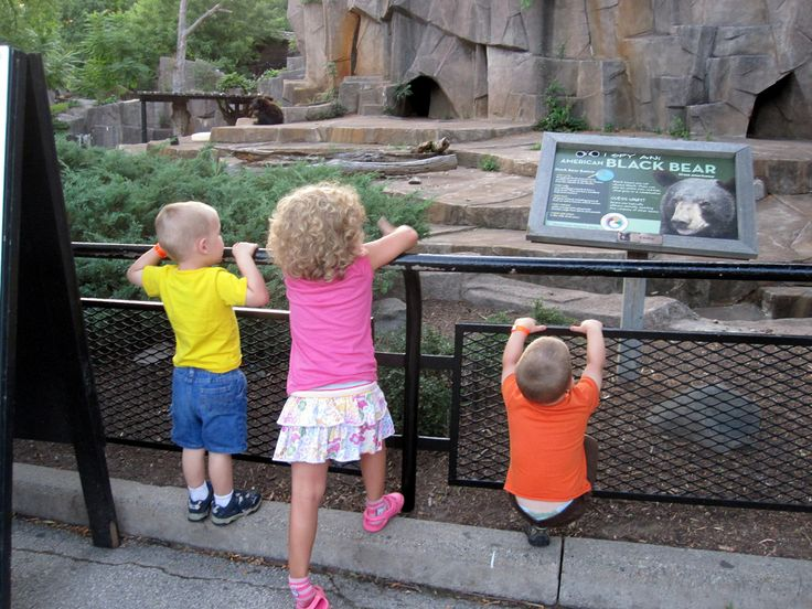 https://flic.kr/p/acoznz | Snooze at the Zoo | Milwaukee Zoo lets their members camp out at the zoo for a small fee...