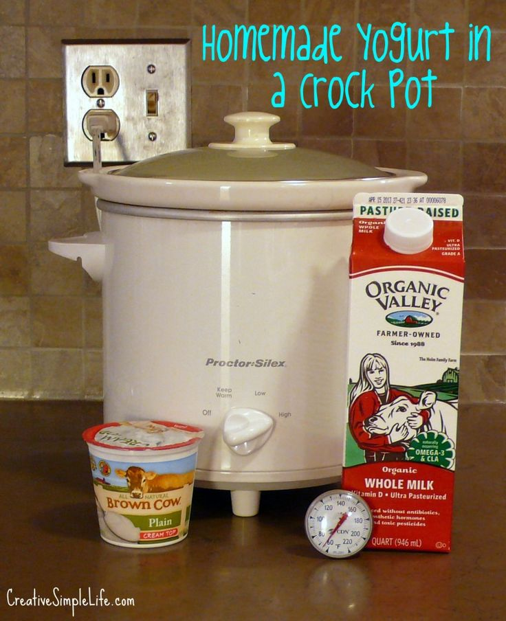 Homemade Yogurt in a Crock Pot