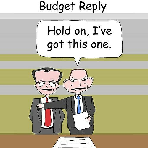 Budget Reply
