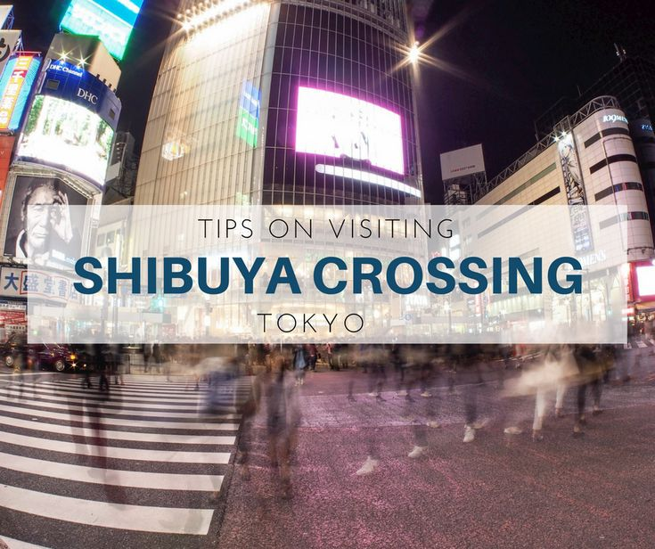 Known for its mass movement of people, visiting Shibuya Crossing in Tokyo offers a quirky activity for visitors - playing in traffic.