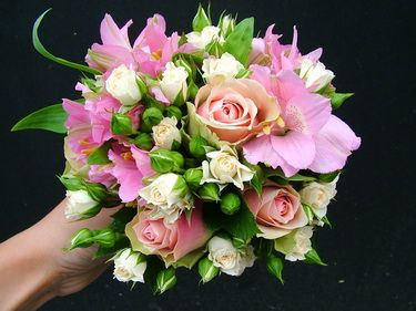 rózsaszín gombóc (10 szál)