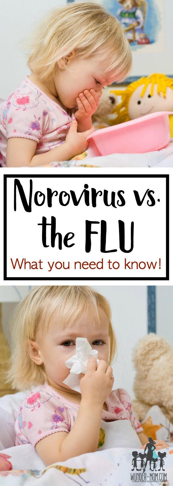 Norovirus vs. the Flu, What you need to Know