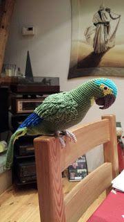 häkeln, Amigurumi, crochet, Blaustirnamazone, Papageien