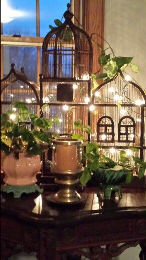 Bird Cage decorated with lights and plants.