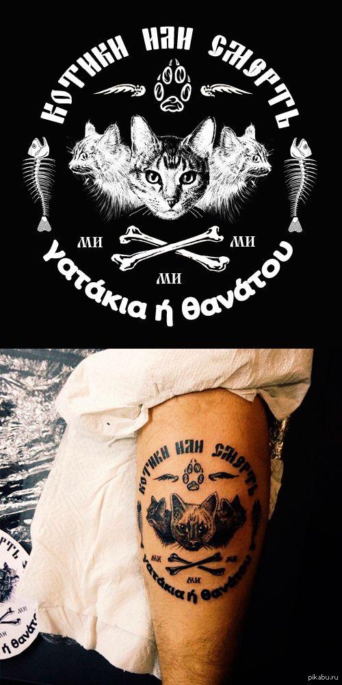 Мне стало что-то скучно Увидел в интернете картинку про котиков и сделал небольшую татуировку на ноге  кот, татуировки