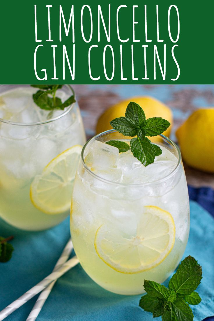 Limoncello Gin Collins Cocktail Recipe A Nerd Cooks Recipe Gin Collins Cocktail Recipes Easy Collins Cocktail