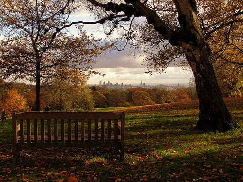 Hampstead Heath in London.  How I miss spending afternoons in the park at the Heath.