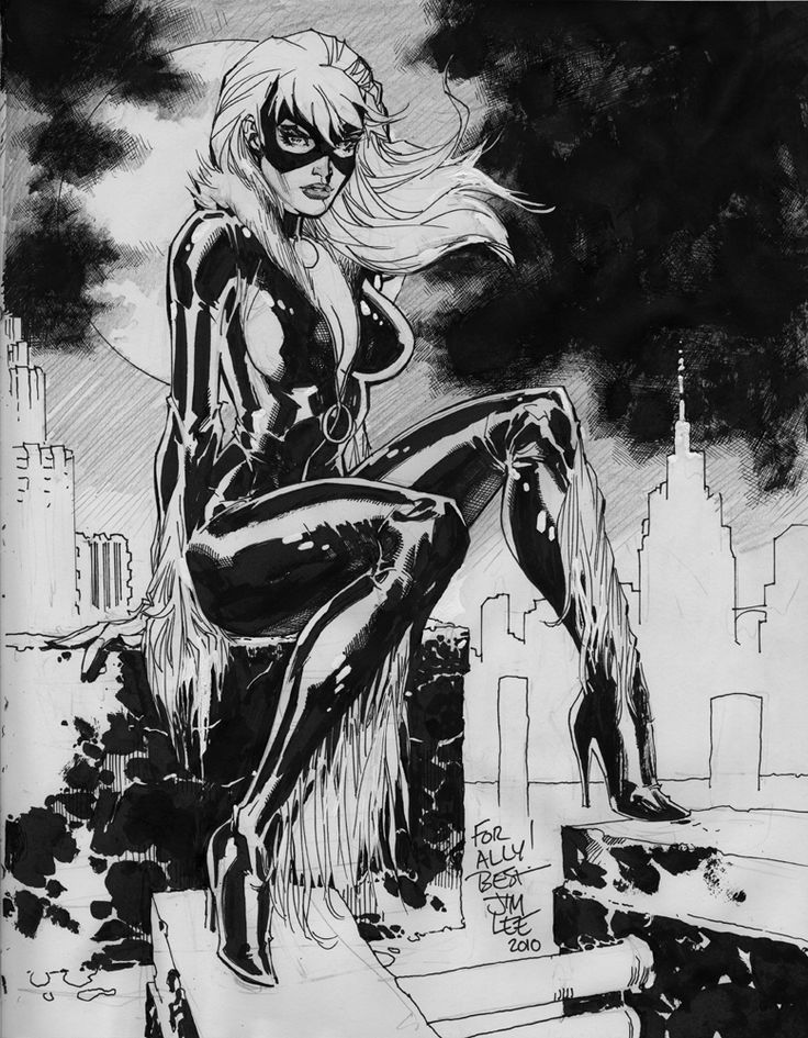 Jim Lee Black Cat Sketchbook Commission, in Joe  L's Jim Lee Comic Art Gallery Room - 730201
