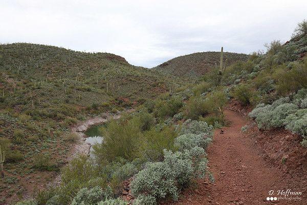Arizona - Pipeline Trail