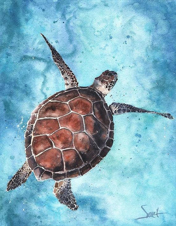 Watercolor Turtle Print Sea Turtle Painting Sea Turtle Wall Art