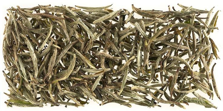 China Silver Needles