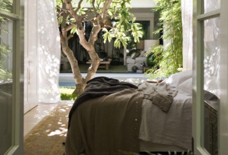 Binnenkijken | Wonen rondom 100 jaar oude Frangipani boom - Stijlvol Styling…