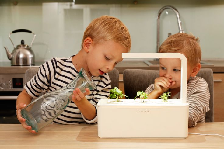 The Future of Gardening Technology : Smart Herb Garden by Click & Grow