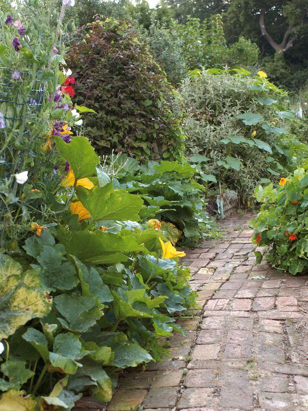 25 best Productive Garden images on Pinterest | Vegetable garden ...