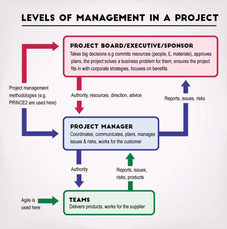 Methodology of project writing and management
