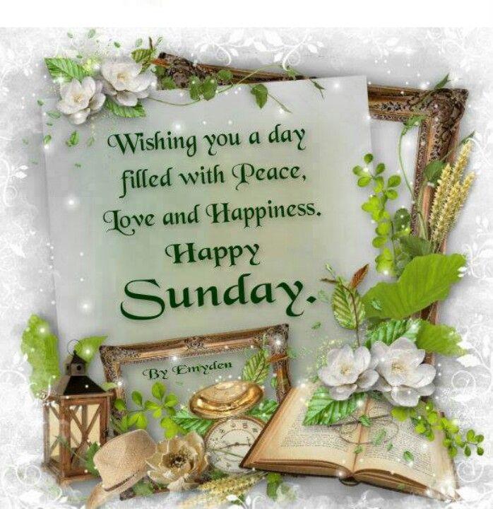 Happy Blessed Sunday Quotes. QuotesGram
