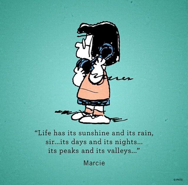 Wisdom according to Marcie