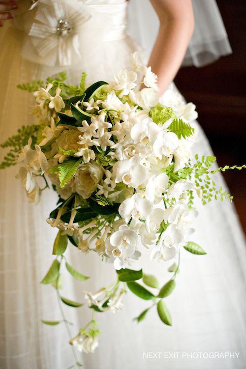 green and white cascade bouquet of phalaenopsis orchids, maidenhair ferns, stephanotis, maybe some jasmine vine?
