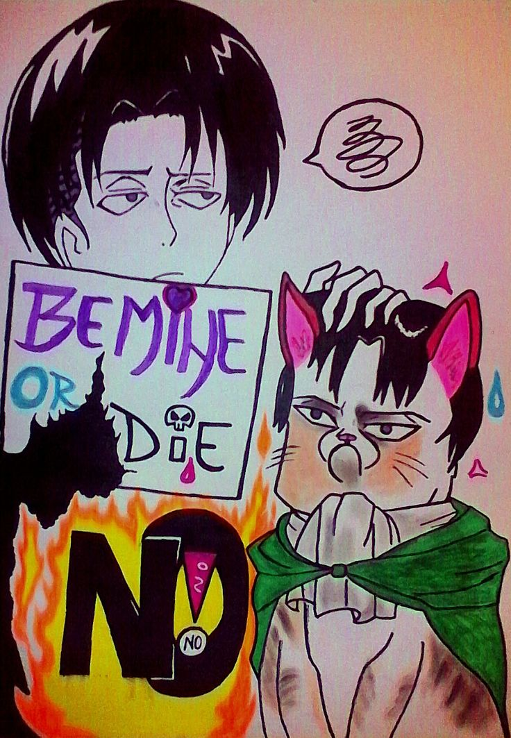 •••LEVI VS. GRUMPY CAT LEVI•••(Sorry if i messed up/failed,also i tried lol)