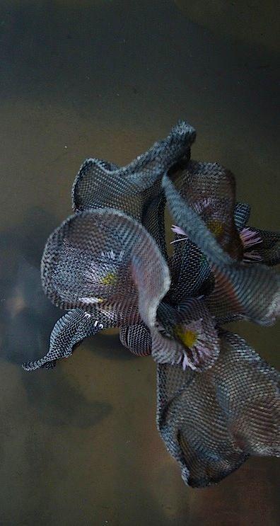 Beautiful. Black Iris ring | SHINJI NAKABA (steel mesh)