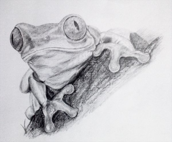 This pencil drawing was included in an article written by Ardi Bakrie.  The artist's name was not provided...