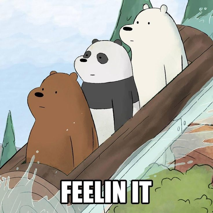 When you don't want your photo to look bad   We Bare Bears   Know Your Meme