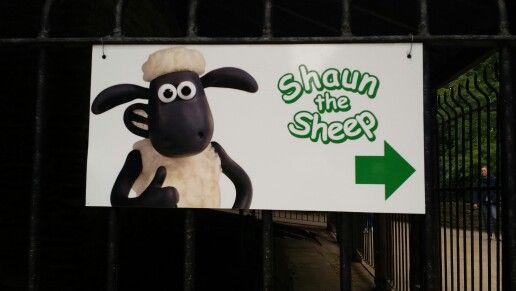 Shaun hunting