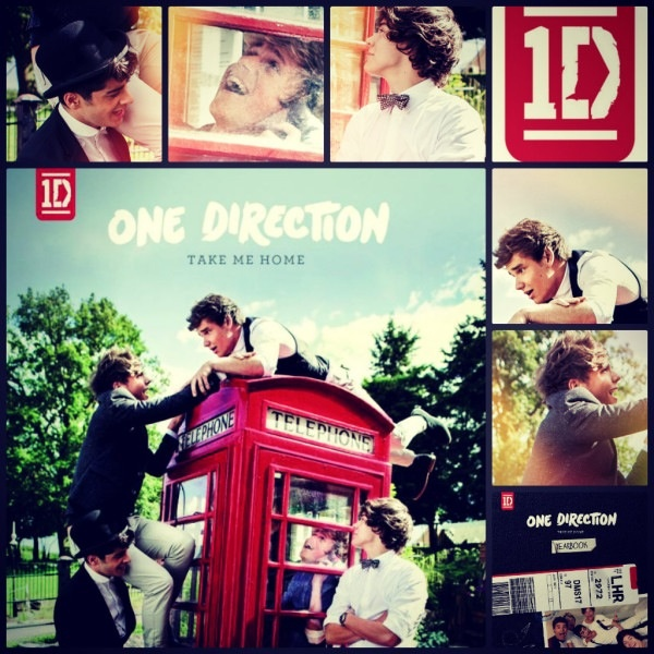 Take me home: Cant Wait, Direction Infection, Albums Covers, Official Albums, Case, Homes, Guys, Flip, Direction 3
