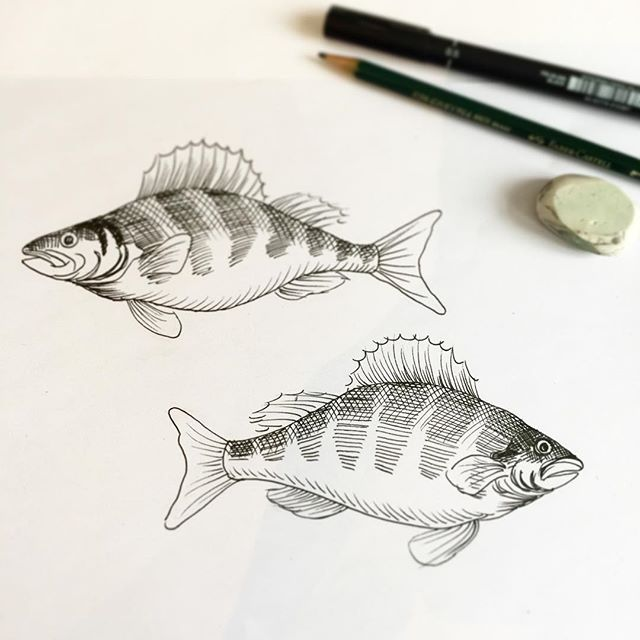 Original illustrations for the fish pattern.