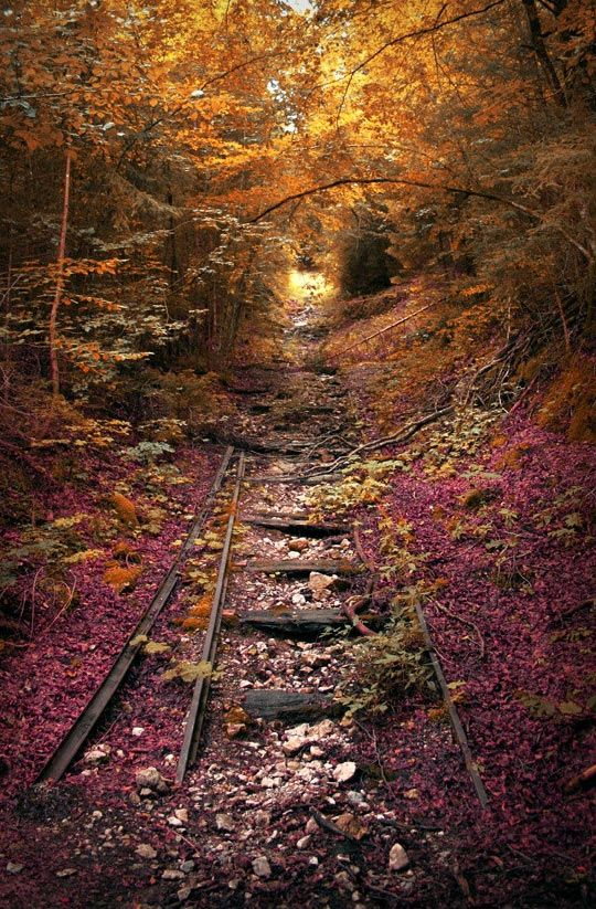 An abandoned railroad in the fall…