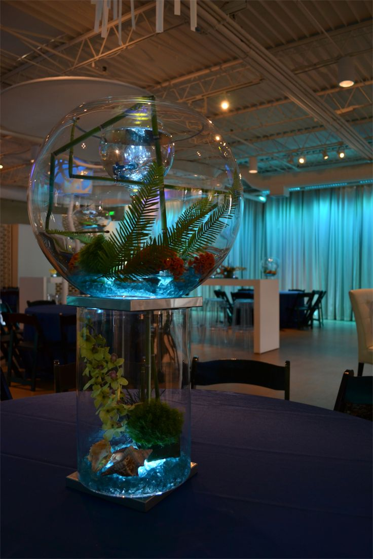 Best 25 Fish Centerpiece Ideas On Pinterest Beta Fish