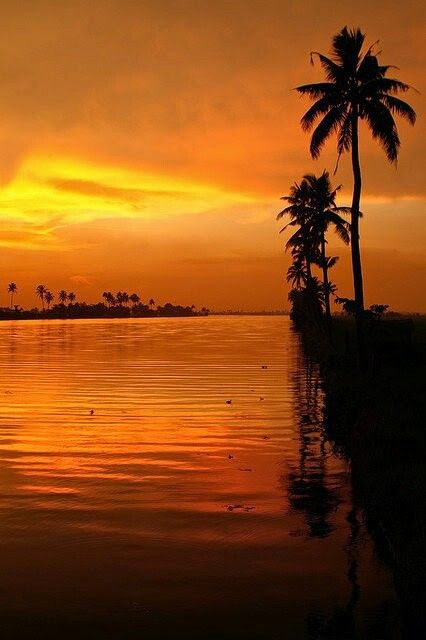Online Houseboats booking in Alleppey @ www.MyHouseboats.com