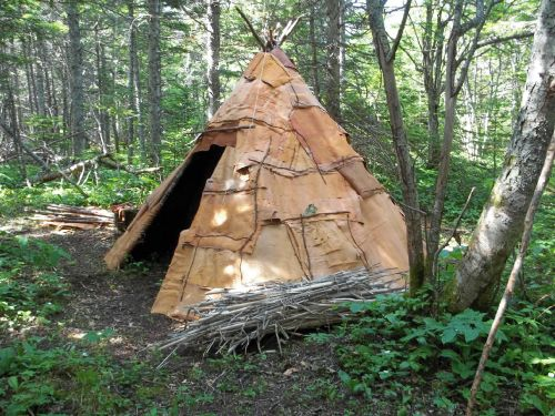 Birch Bark Tipi Crafts Things To Make Out Of Tree