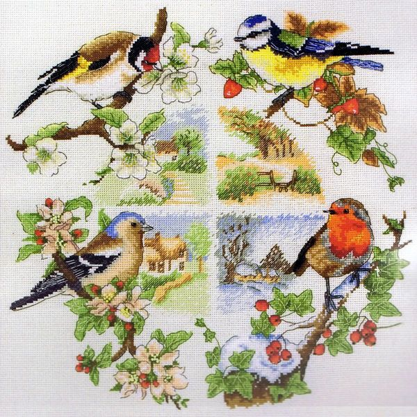 A lovely sampler of birds on tree branches - goldfinch, blue tit, chaffinch and robin.