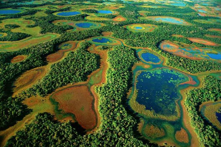 Lovers of #nature, you can not miss the unique #experience of the Photographic #Zafari  in #Pantanal #Brazil. Five days of pure #adventure. Walks through the woods, views of breathtaking landscapes, river walks, #expeditions, and a unique encounter with #jaguares in Porto Jofre. Consult us: goo.gl/Af0z2w
