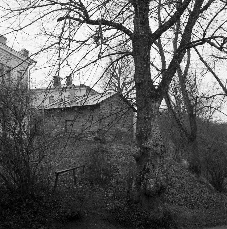 2014_Nov_Suomenlinna-Sveaborg_Rolleicord_Xenar_013