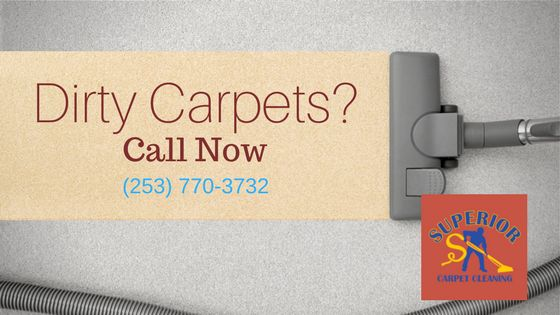 Services Offered: Carpet Steam Cleaning in Puyallup, WA Upholstery Cleaning in Puyallup, WA Air Duct Cleaning in Puyallup, WA Tile and Grout Cleaning in Puyallup, WA Pet Stain and Odor Removal in Puyallup, WA Carpet Stretching and Repair in Puyallup, WA House Cleaning Move in/out in Puyallup, WA Roof and Gutter Cleaning in Puyallup, WA Pressure Washing in Puyallup, WA Free Estimate Cleaning in Puyallup, WA