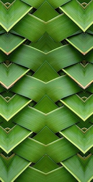 Bamboo House Decor